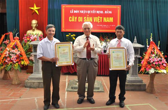 le cong nhan 2 Cay thi tai den chua thon Phu Man thi tran Cho la Cay Di san Viet Nam